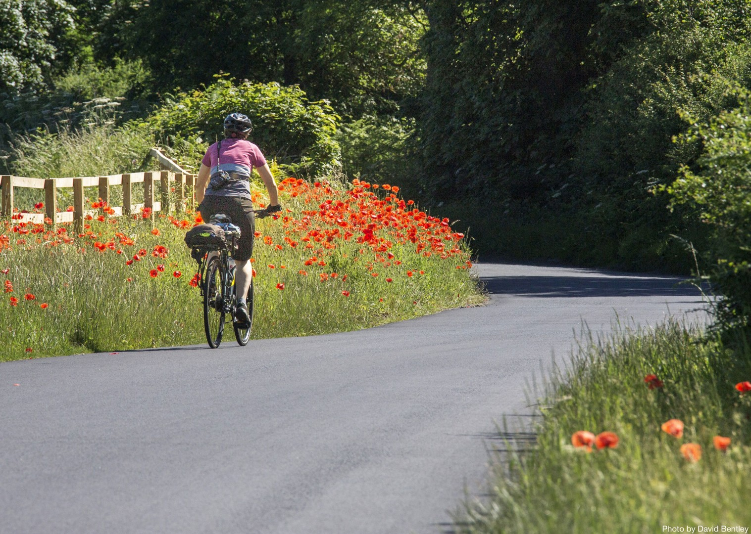 Hadrians-Cycleway-Self-Guided-Leisure-Cycling-Holiday-Cumbria-and-Northumberland.jpg - UK - Hadrian's Cycleway - 2 Days Cycling - Self-Guided Leisure Cycling Holiday - Leisure Cycling
