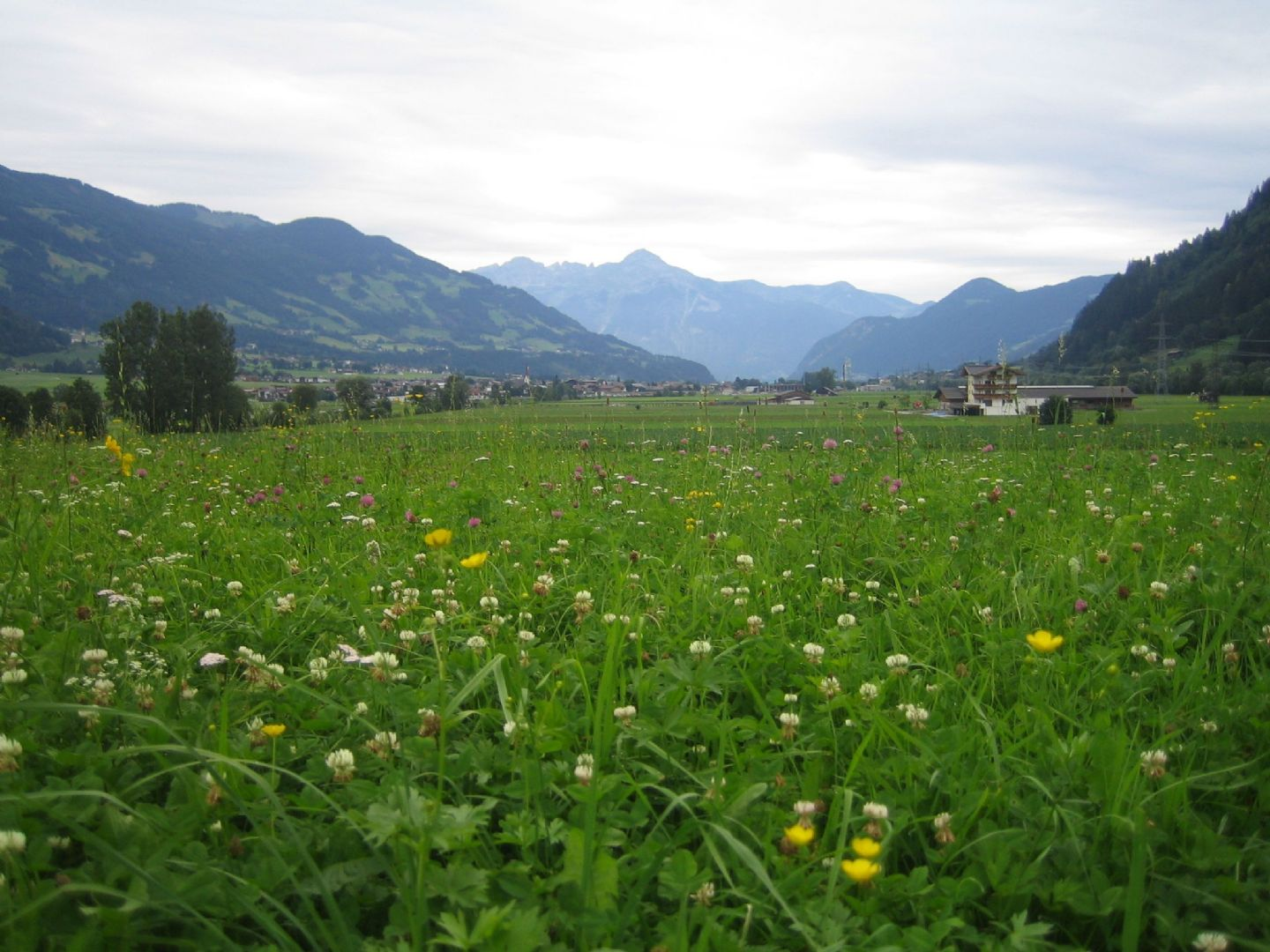 tyr 4.jpg - Austria - Tyrolean Valleys - Self-Guided Leisure Cycling Holiday - Leisure Cycling