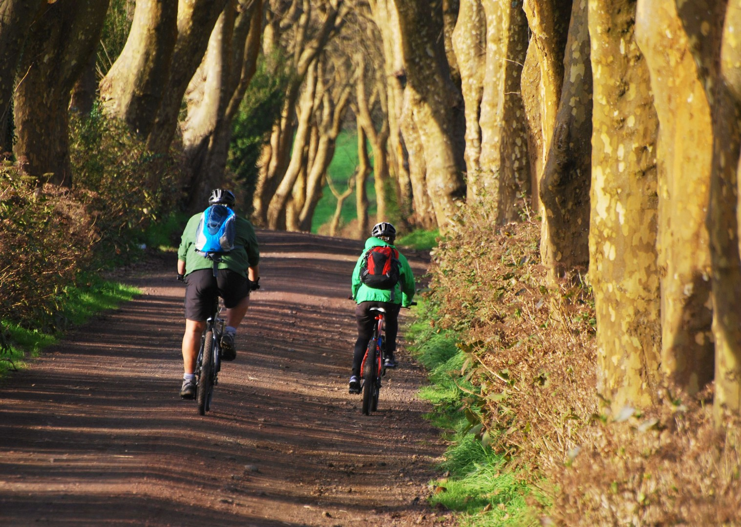 self-guided-leisure-cycling-adventure-azores.jpg - The Azores - Islands and Volcanoes - Self-Guided Leisure Cycling Holiday - Leisure Cycling