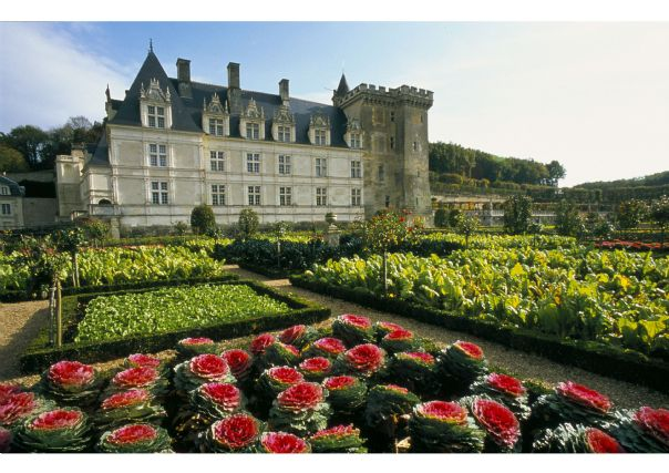 Skedaddle Cycling Holiday France Loire 26 Chateaux of the Loire -Villandry chateau.jpg - France - Gentle Loire - Self-Guided Leisure Cycling Holiday - Leisure Cycling