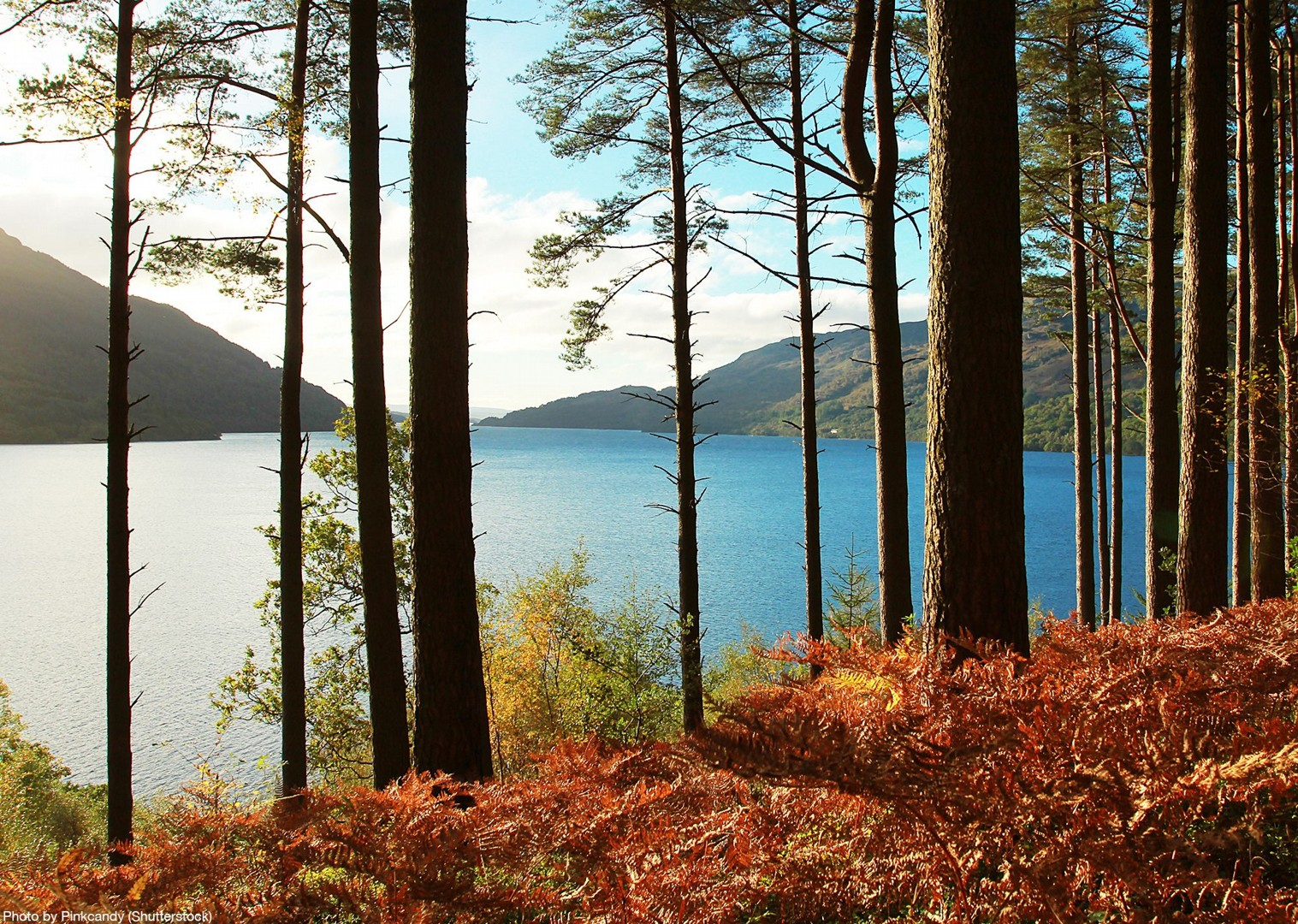 lochs-and-glens-loch-lomond-scotland-bike-holiday-tour-skedaddle.jpg - UK - Scotland - Lochs and Glens - Self-Guided Leisure Cycling Holiday - Leisure Cycling