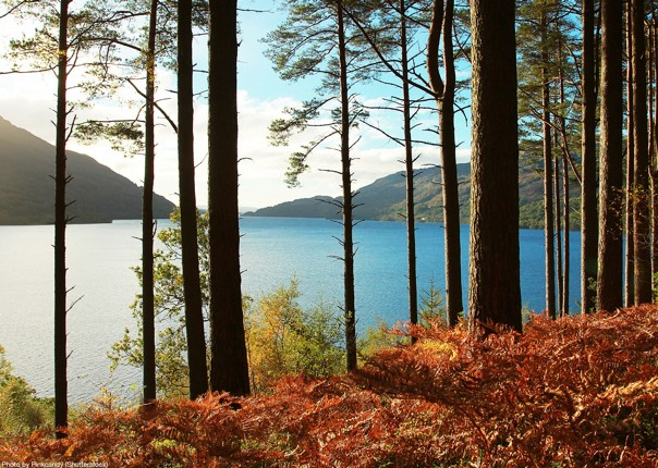 UK - Scotland - Lochs and Glens - Self-Guided Leisure Cycling Holiday Image