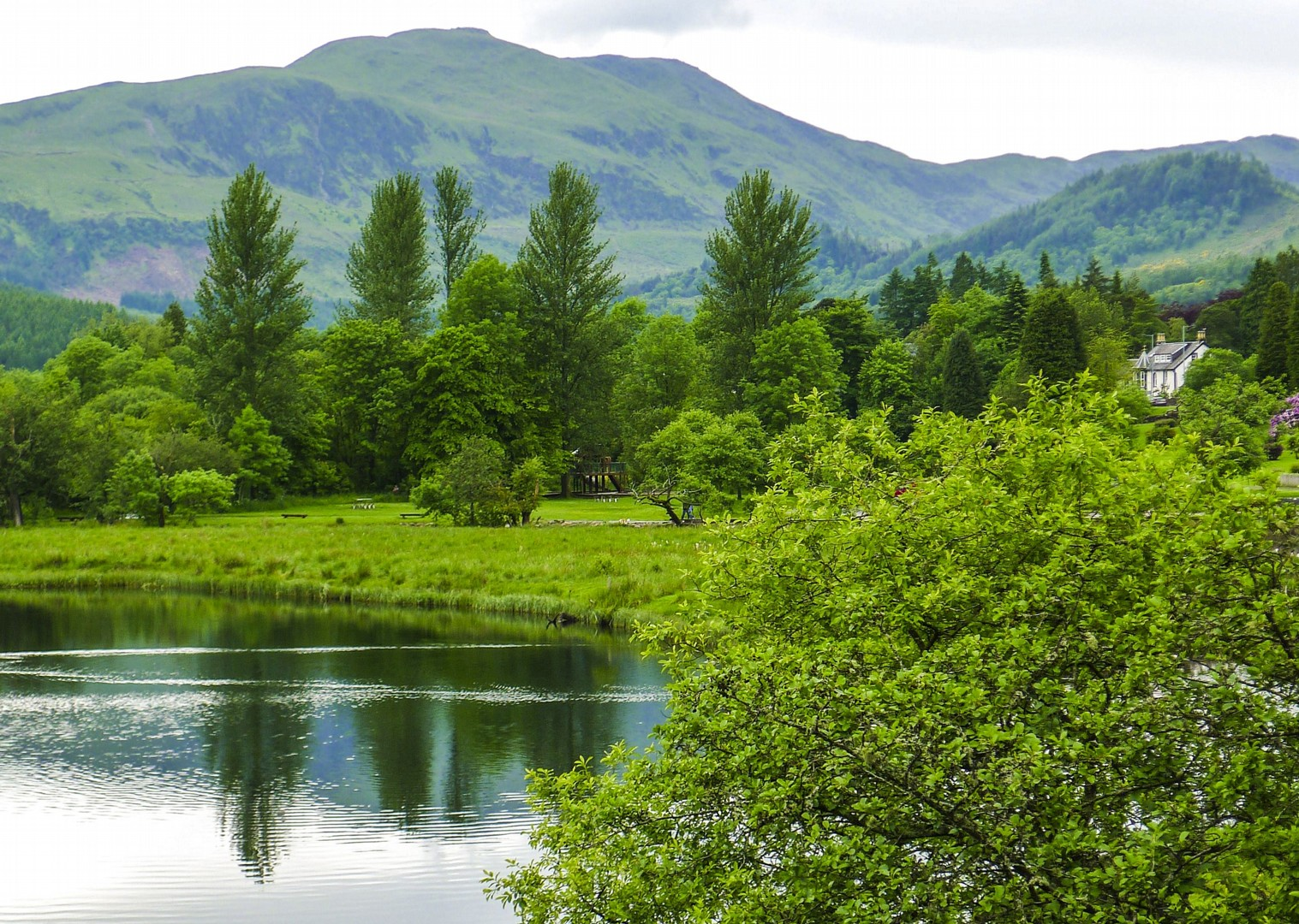 scottish-cycling-mountains-lakes-rivers-whiskey-distillery-bike-holiday.jpg - UK - Scotland - Lochs and Glens - Leisure Cycling