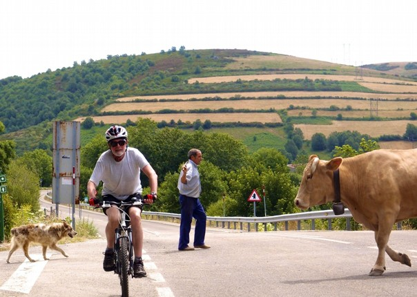 Caminodesantiago11.jpg - Northern Spain - Camino de Santiago - Self-Guided Leisure Cycling Holiday - Leisure Cycling