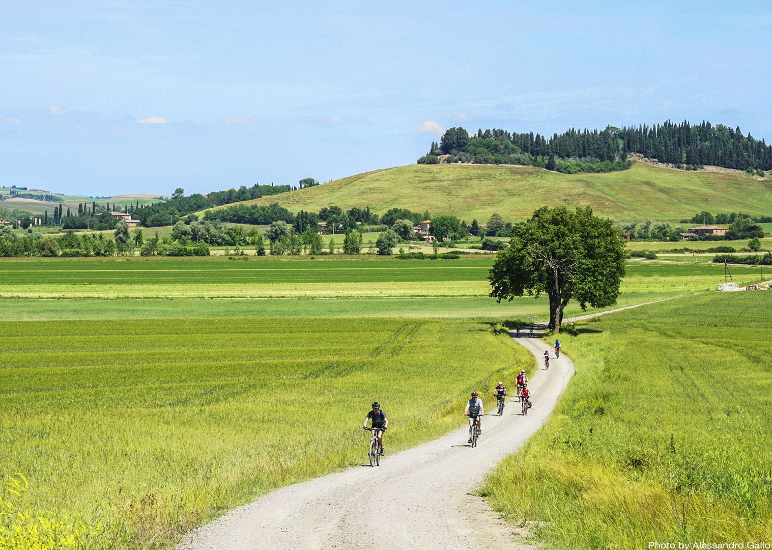 guided-holiday-on-bikes-thorugh-tuscan-fields-and-farms.jpg - Italy - A Taste of Tuscany - Leisure Cycling