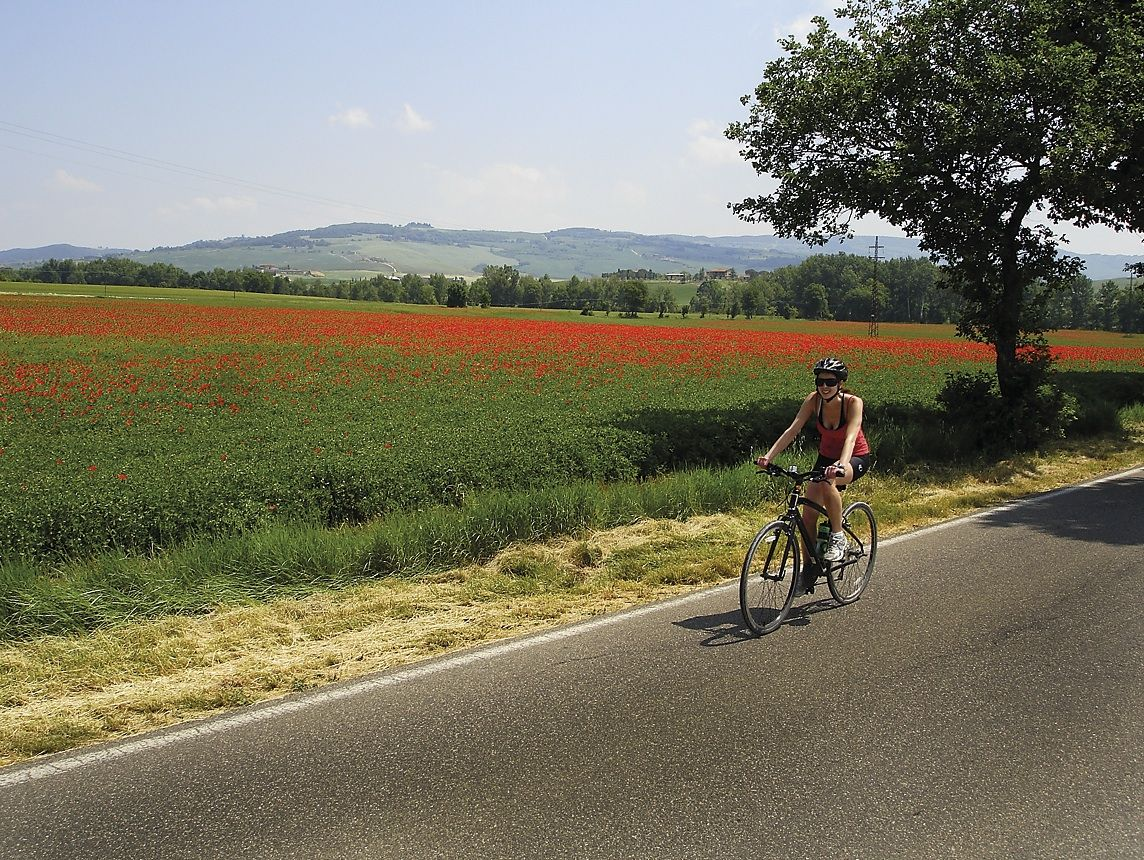 Tuscany 3.jpg - Italy - A Taste of Tuscany - Guided Leisure Cycling Holiday - Leisure Cycling