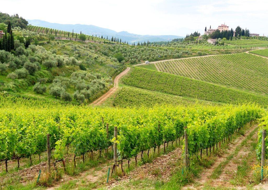 cycling-holiday-tuscany 9.jpg - Italy - Classic Tuscany - Self-Guided Leisure Cycling Holiday - Leisure Cycling
