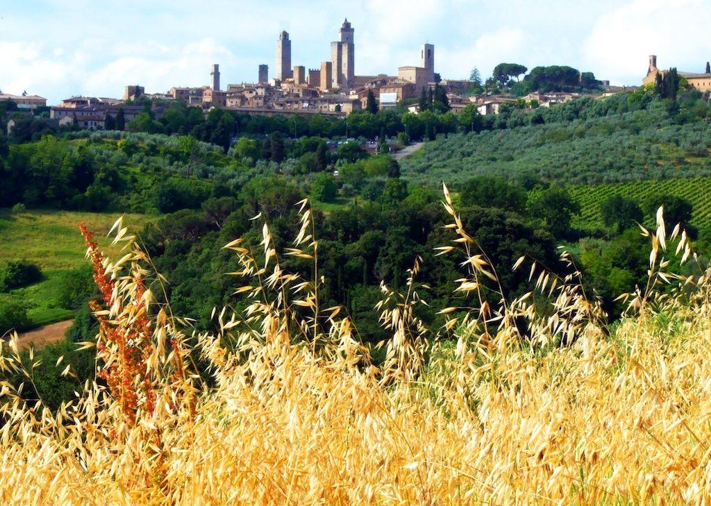 cycling-holiday-tuscany 3.jpg - Italy - Classic Tuscany - Self-Guided Leisure Cycling Holiday - Leisure Cycling