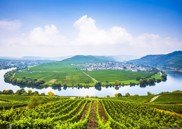 self-guided-leisure-cycling-holiday-germany-moselle-valley.jpg - Germany - Moselle Valley - Self-Guided Leisure Cycling Holiday - Leisure Cycling