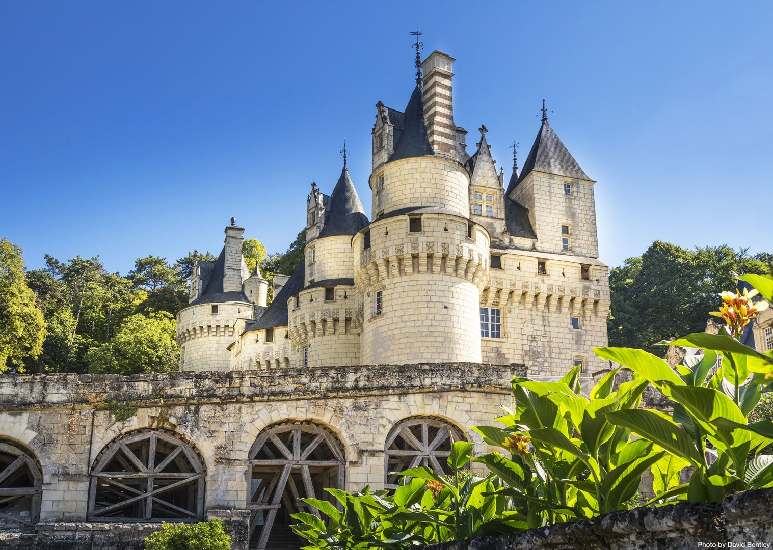 chateaux-of-the-loire-cycling-holiday.jpg - France - Chateaux of the Loire - Self-Guided Leisure Cycling Holiday - Leisure Cycling