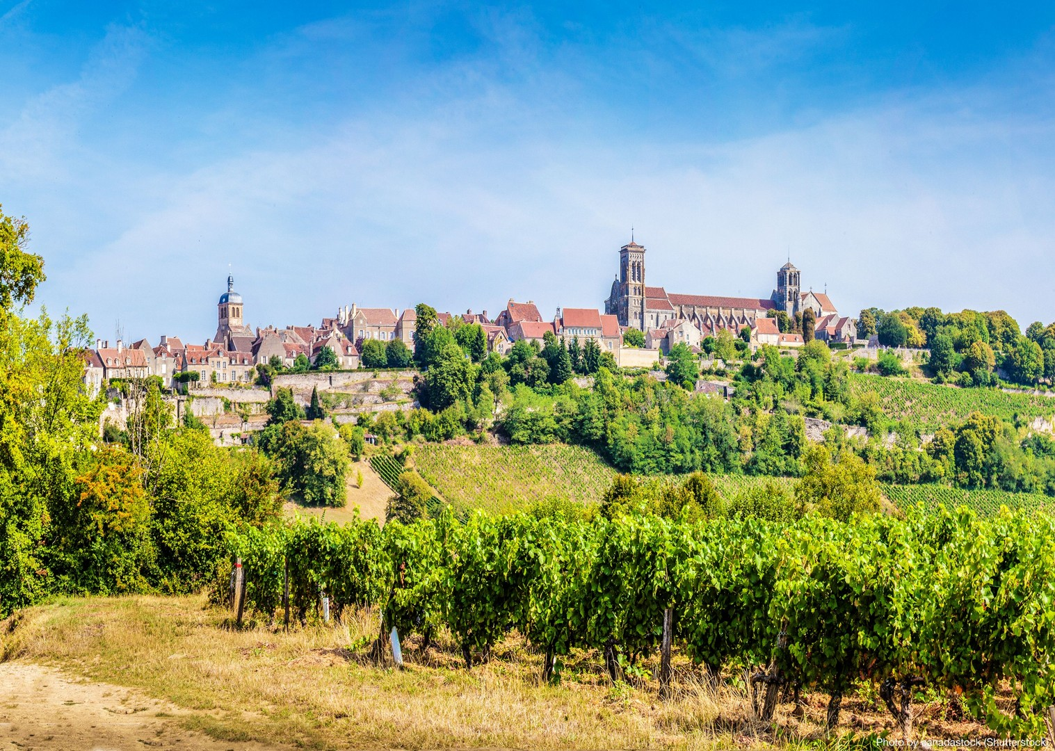 burgundy-cycling-holiday-in-france-caves-and-canals.jpg - France - Burgundy - Caves and Canals - Self-Guided Leisure Cycling Holiday - Leisure Cycling