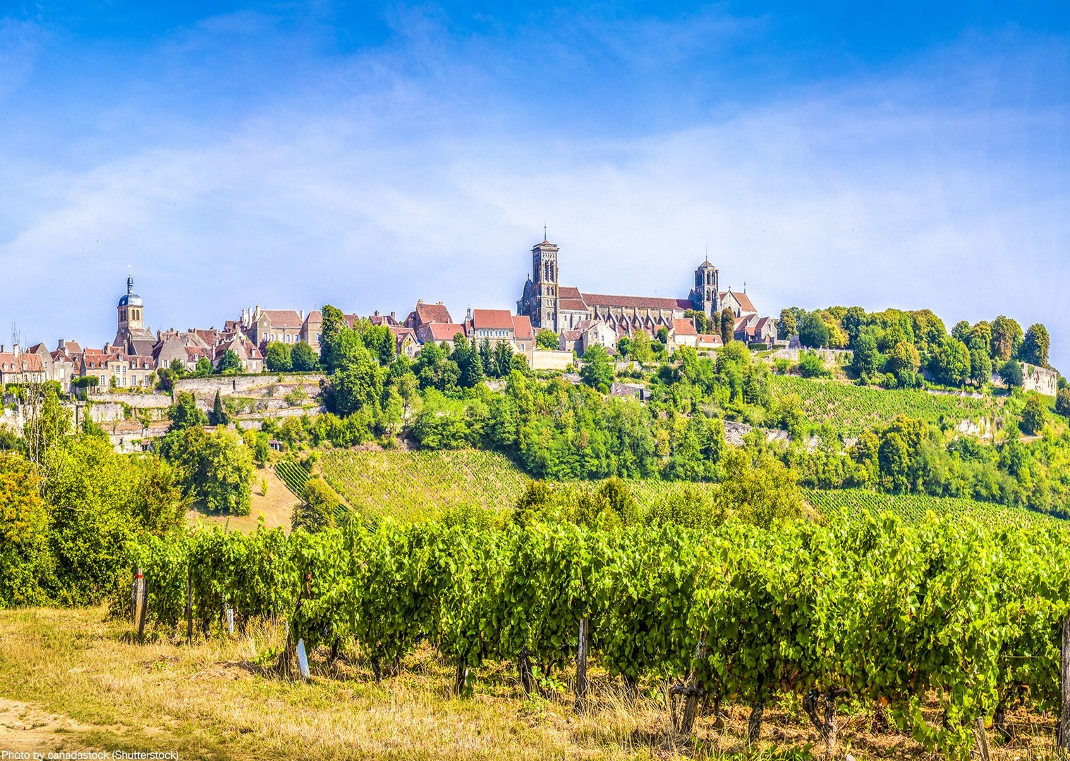 bourgogne-franche-comté-vineyards-wine-burgundy-cycle-tour.jpg - France - Burgundy - Caves and Canals - Self-Guided Leisure Cycling Holiday - Leisure Cycling