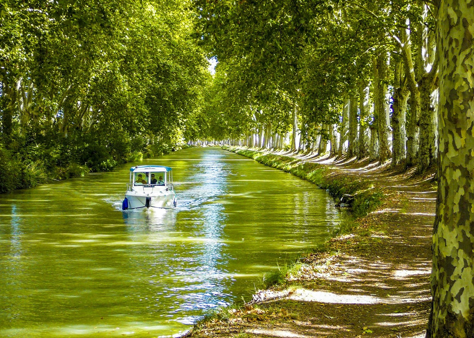 canal-du-nivernais-cycling-burgundy-france-saddle-skedaddle-self-guided.jpg - France - Burgundy - Caves and Canals - Self-Guided Leisure Cycling Holiday - Leisure Cycling