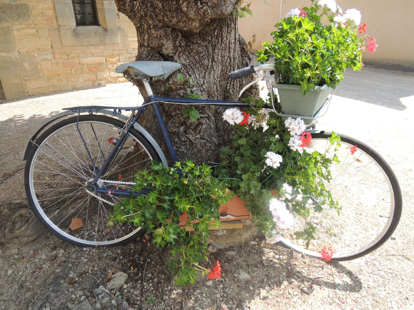leisurecyclingfrance4.JPG - France - Dordogne Delights - Self-Guided Leisure Cycling Holiday - Leisure Cycling