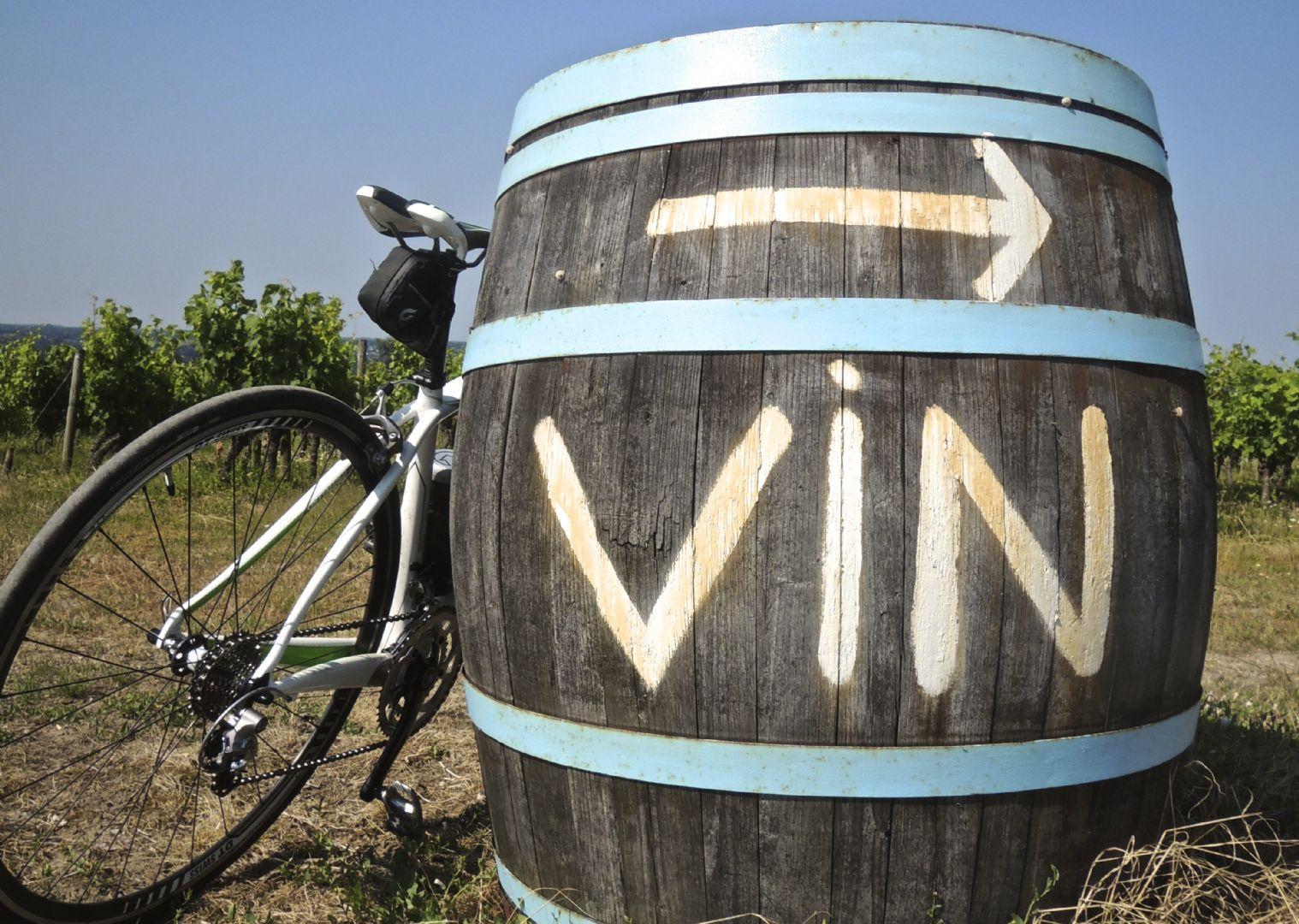 Francecyclingholiday46.jpg - France - Provence - Self-Guided Leisure Cycling Holiday - Leisure Cycling