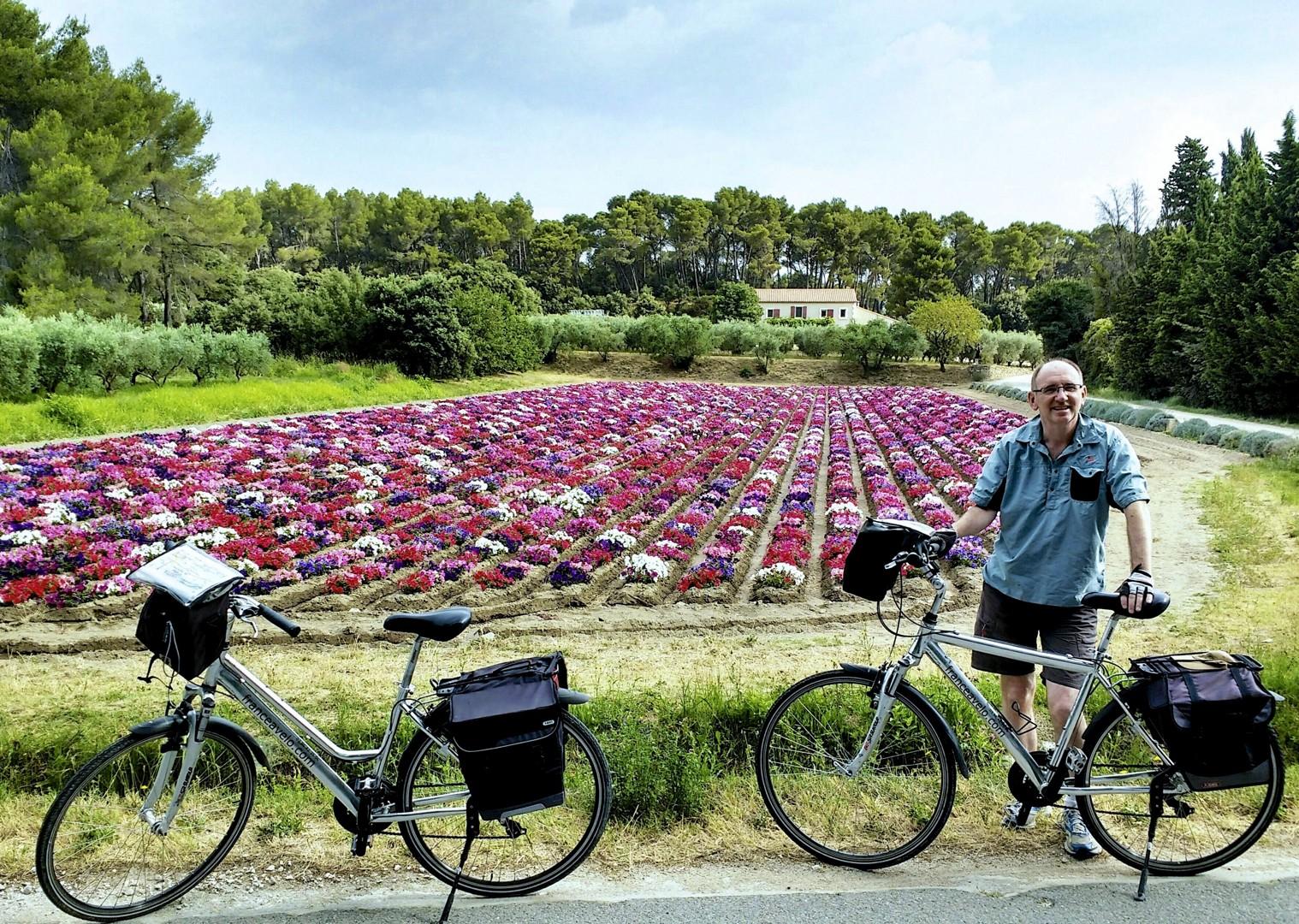 lesiure-cycling-holiday-france-provence.jpg - France - Provence - Self-Guided Leisure Cycling Holiday - Leisure Cycling