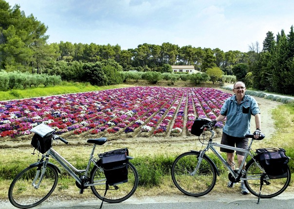 France - Provence - Self-Guided Leisure Cycling Holiday Thumbnail