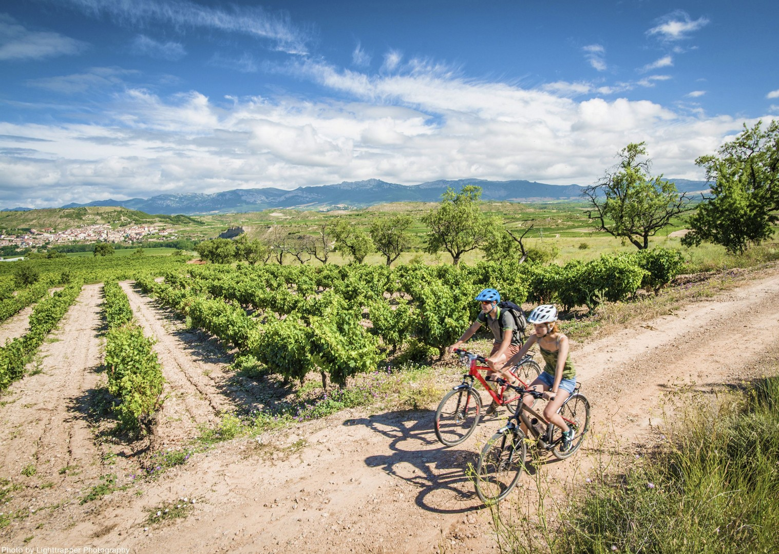 day6_northern_spain_008.jpg - Northern Spain - Ride Rioja - Leisure Cycling