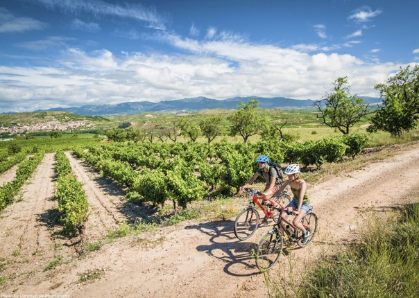 Northern Spain - Riojan Rolling - Guided Leisure Cycling Holiday Image