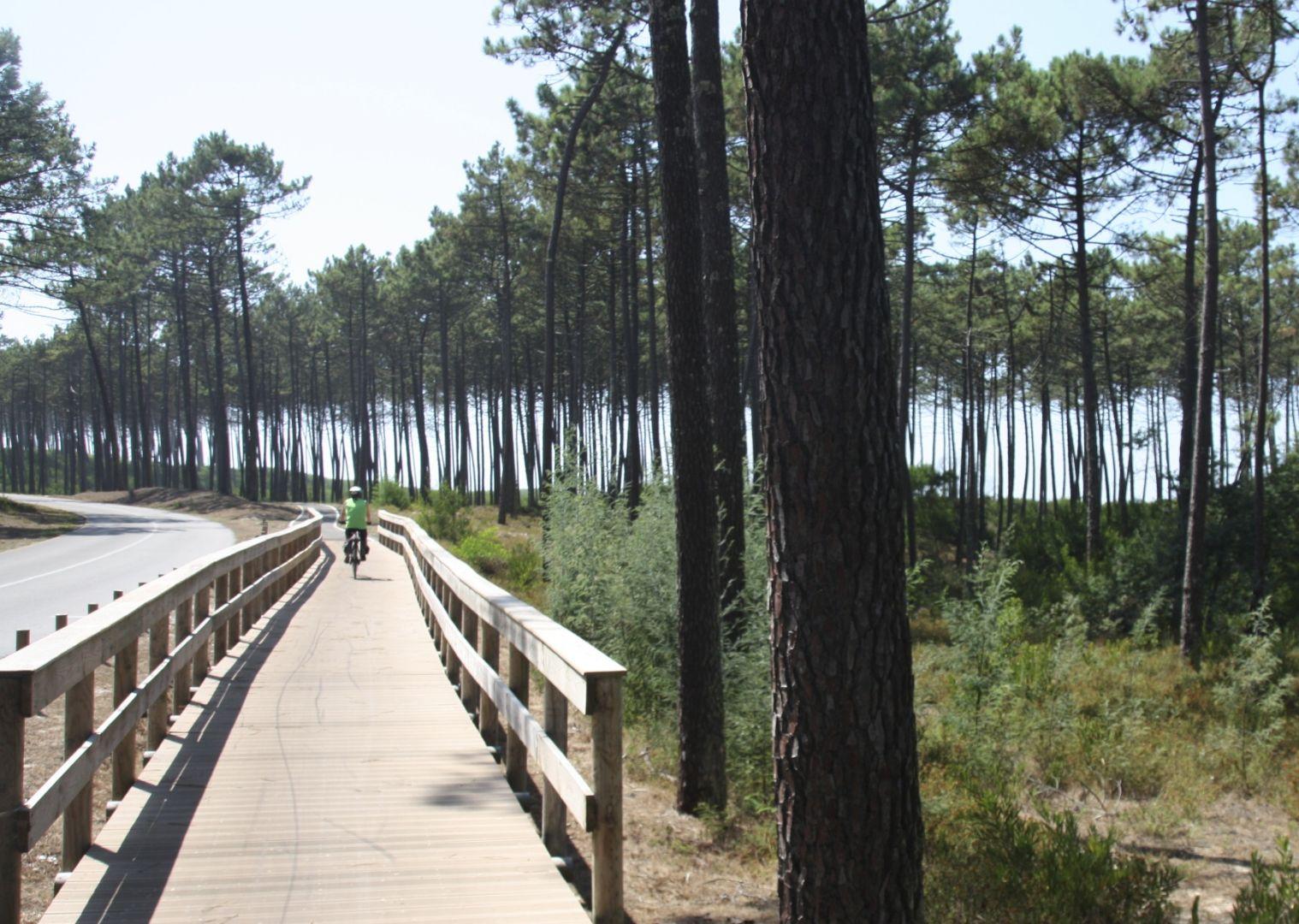 IMG_1019.jpg - Portugal - Azure Ocean Ride - Leisure Cycling