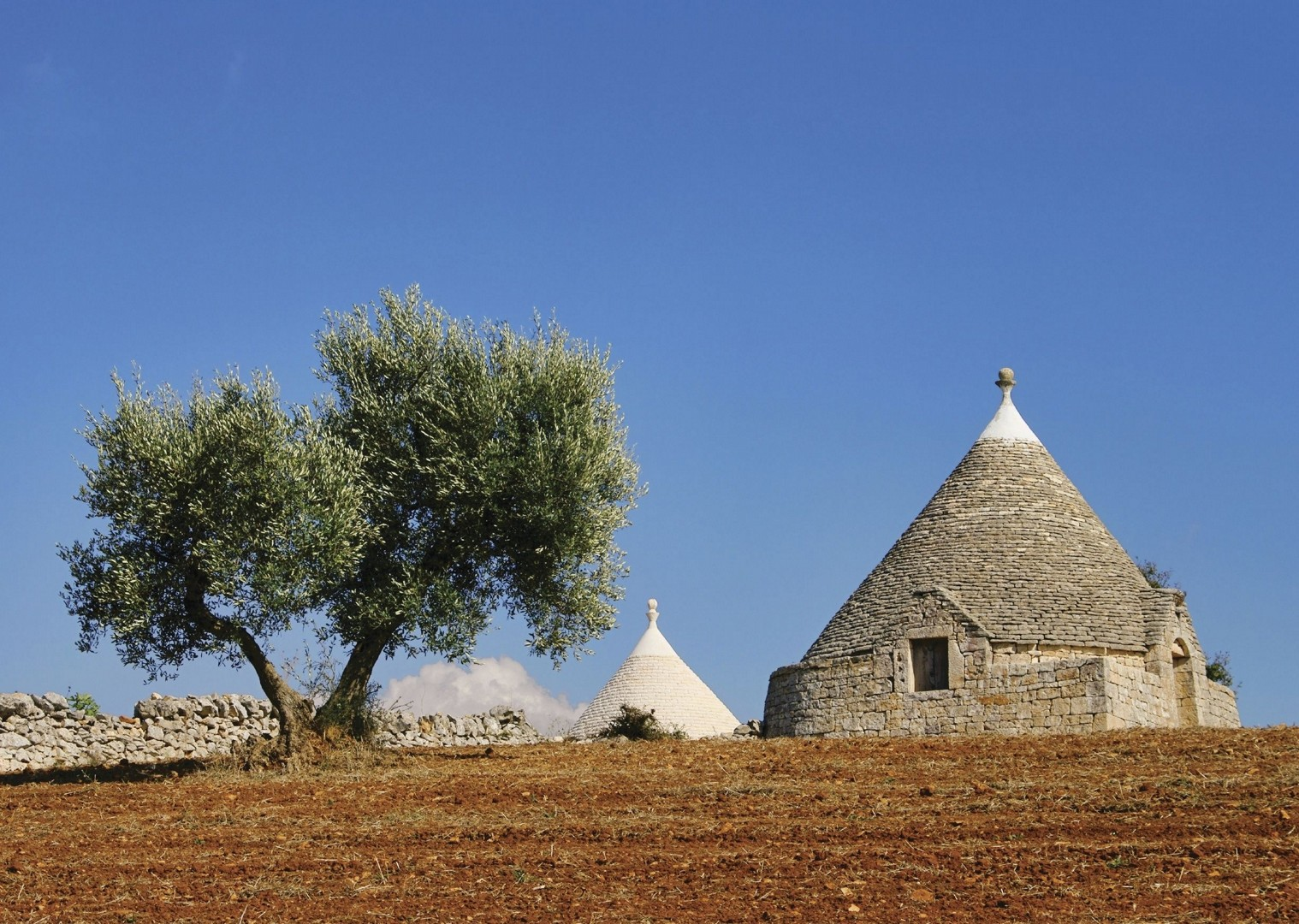 cycling-holiday-italy-puglia-trulli-culture.jpg - Italy - Puglia - Guided Leisure Cycling Holiday - Leisure Cycling