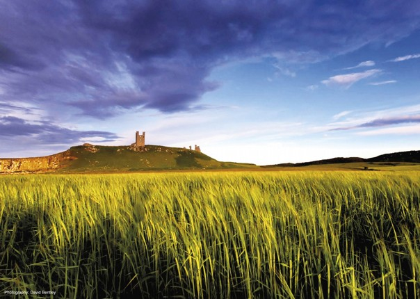 UK - Northumberland - Alnmouth - Self-Guided Leisure Cycling Holiday Image