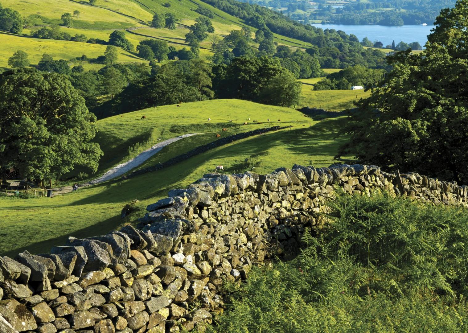 leisure-cycling-holiday-lakedistrict-derwentbank-nature.jpg - UK - Lake District - Derwent Water - Guided Leisure Cycling Holiday - Leisure Cycling