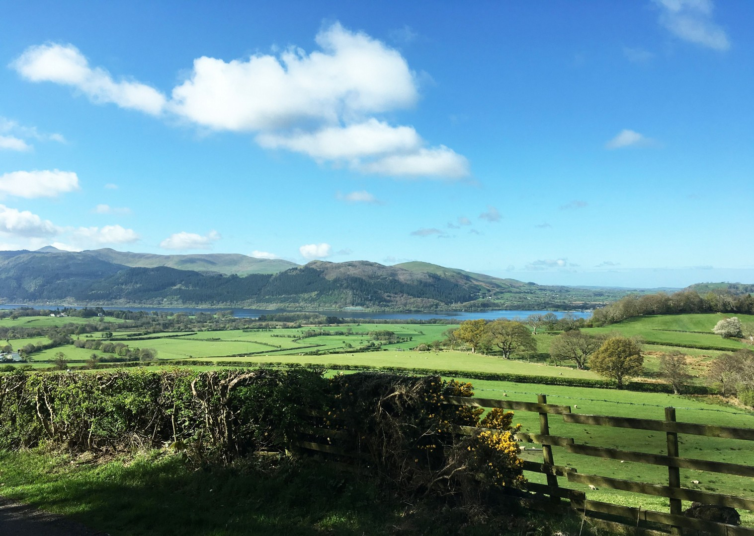 _Staff.428.33582.jpg - UK - Lake District - Derwent Water - Guided Leisure Cycling Holiday - Leisure Cycling