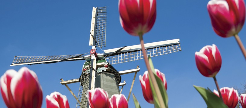 BOOK NOW FOR 2018! Spring in Holland is the most beautiful season, so why not enjoy it cycling and cruising to some unforgettably beautiful areas to see where Dutch tulips are grown.