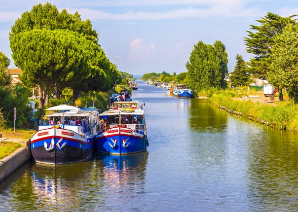 provence-aigues-mortes-to-avignon-bike-and-boat-cycling-tour.jpg