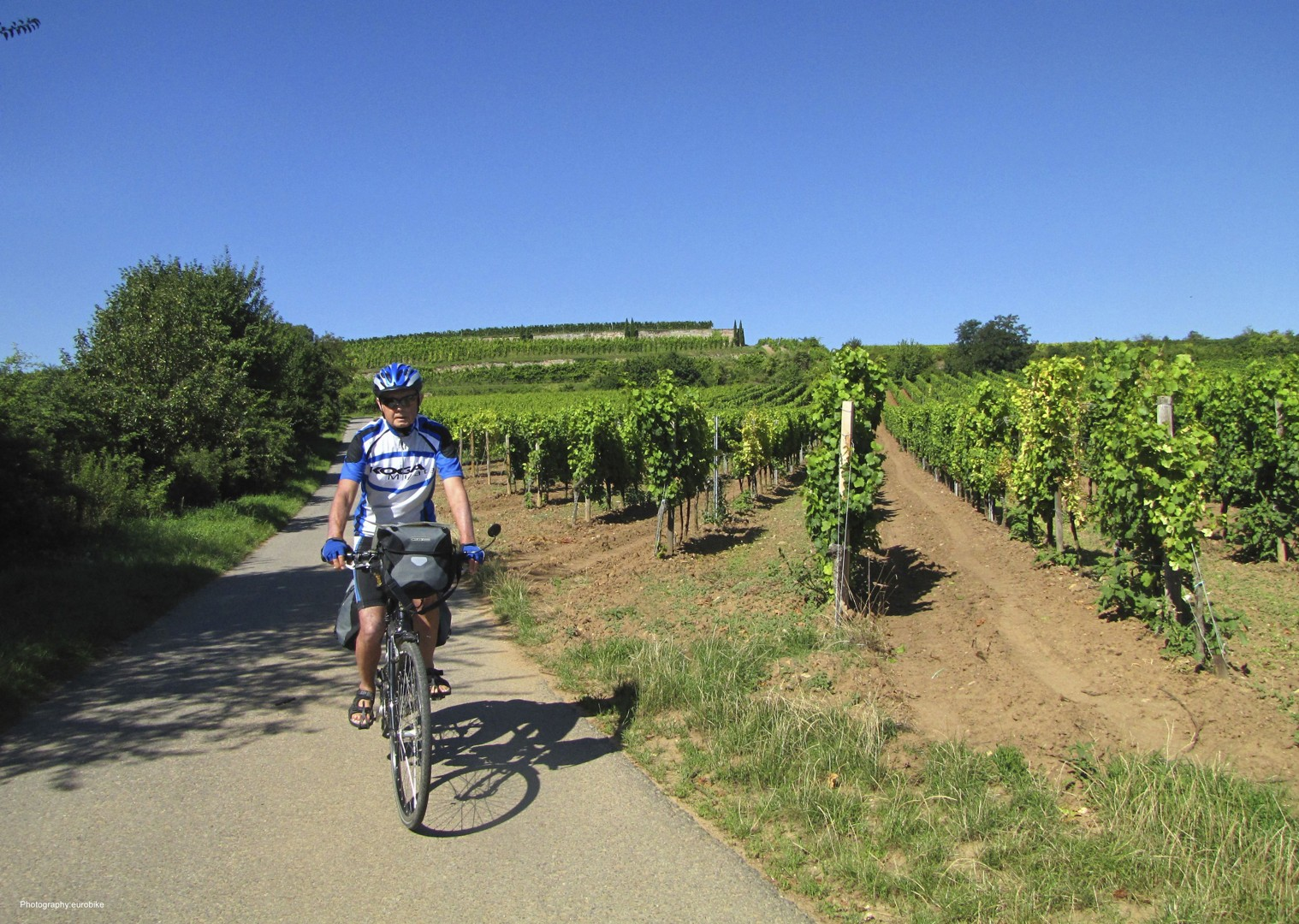 leisure-cycling-holiday-rhine-radweg-strassburg-mainz-pfalz-radfahrer-16_28013741354_o copy.jpg - Germany and France - The Rhine Valley - Self-Guided Leisure Cycling Holiday - Leisure Cycling