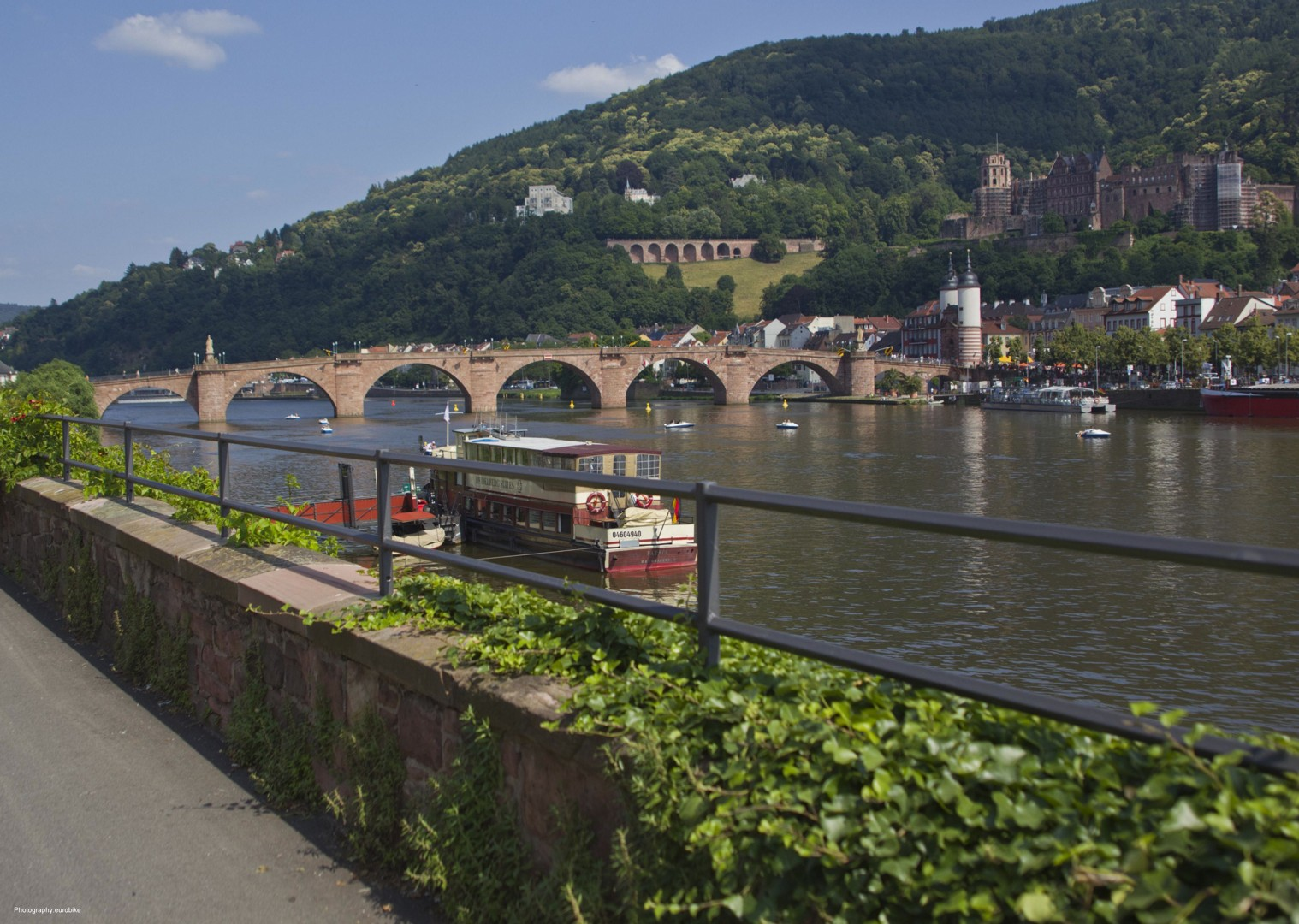 leisure-cycling-holiday-radweg-strassburg-mainz-heidelberg-neckar.jpg - Germany and France - The Rhine Valley - Self-Guided Leisure Cycling Holiday - Leisure Cycling