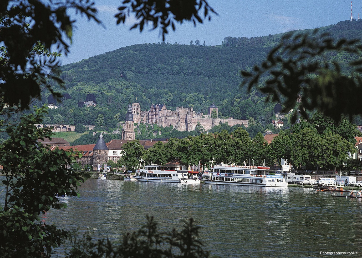 leisure-cycling-holiday-rhine-radweg-strassburg-mainz-heidelberg.jpg - Germany and France - The Rhine Valley - Self-Guided Leisure Cycling Holiday - Leisure Cycling