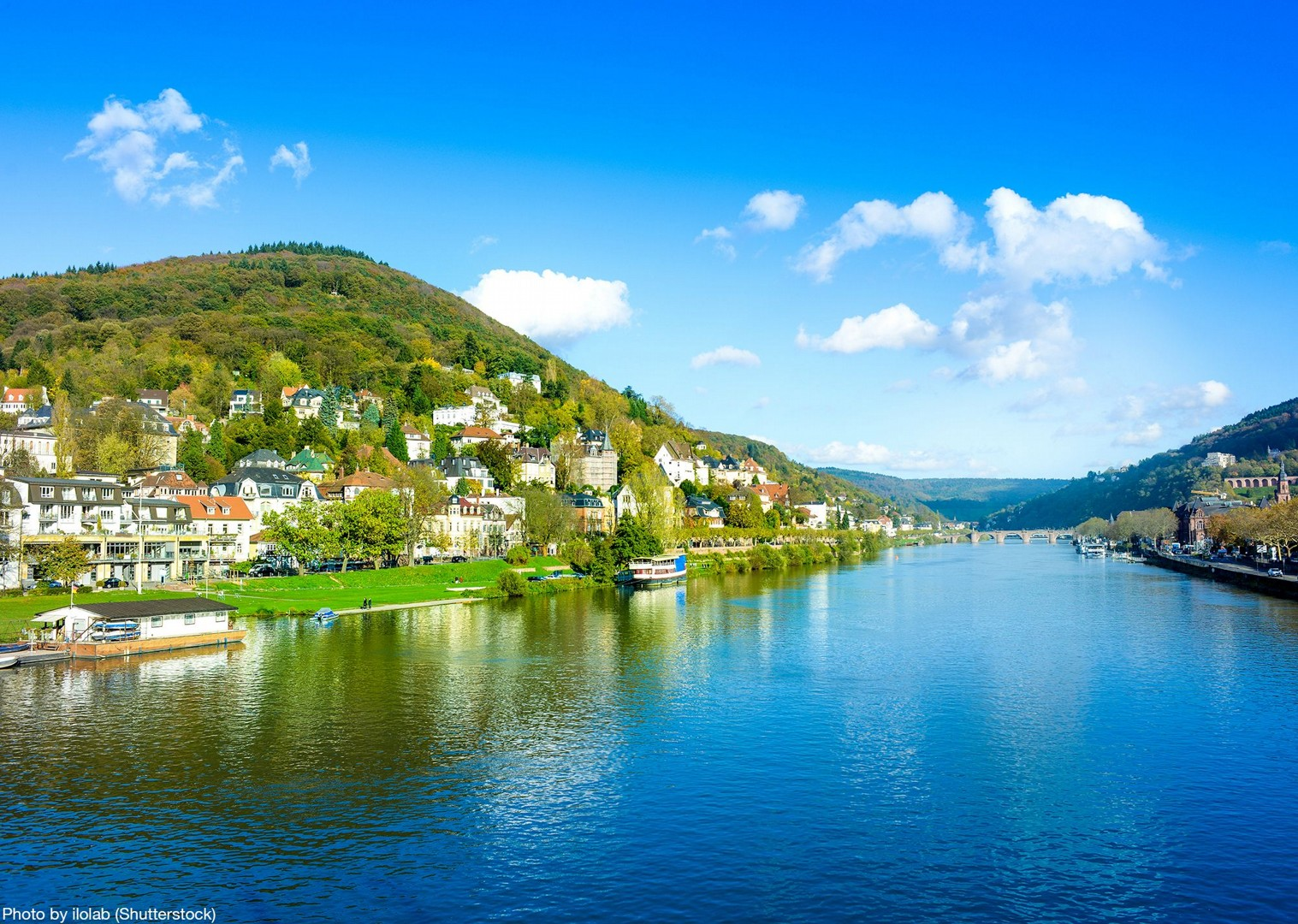 shutterstock_187746425.jpg - Germany and France - The Rhine Valley - Self-Guided Leisure Cycling Holiday - Leisure Cycling
