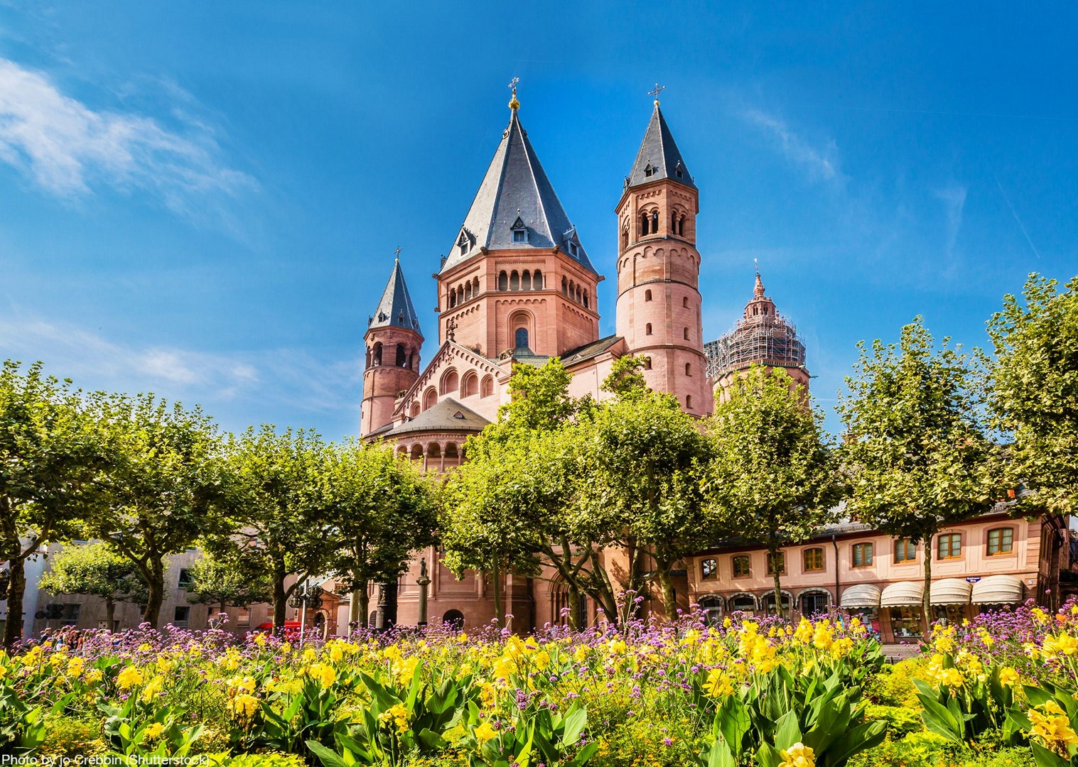 shutterstock_377216410.jpg - Germany and France - The Rhine Valley - Self-Guided Leisure Cycling Holiday - Leisure Cycling