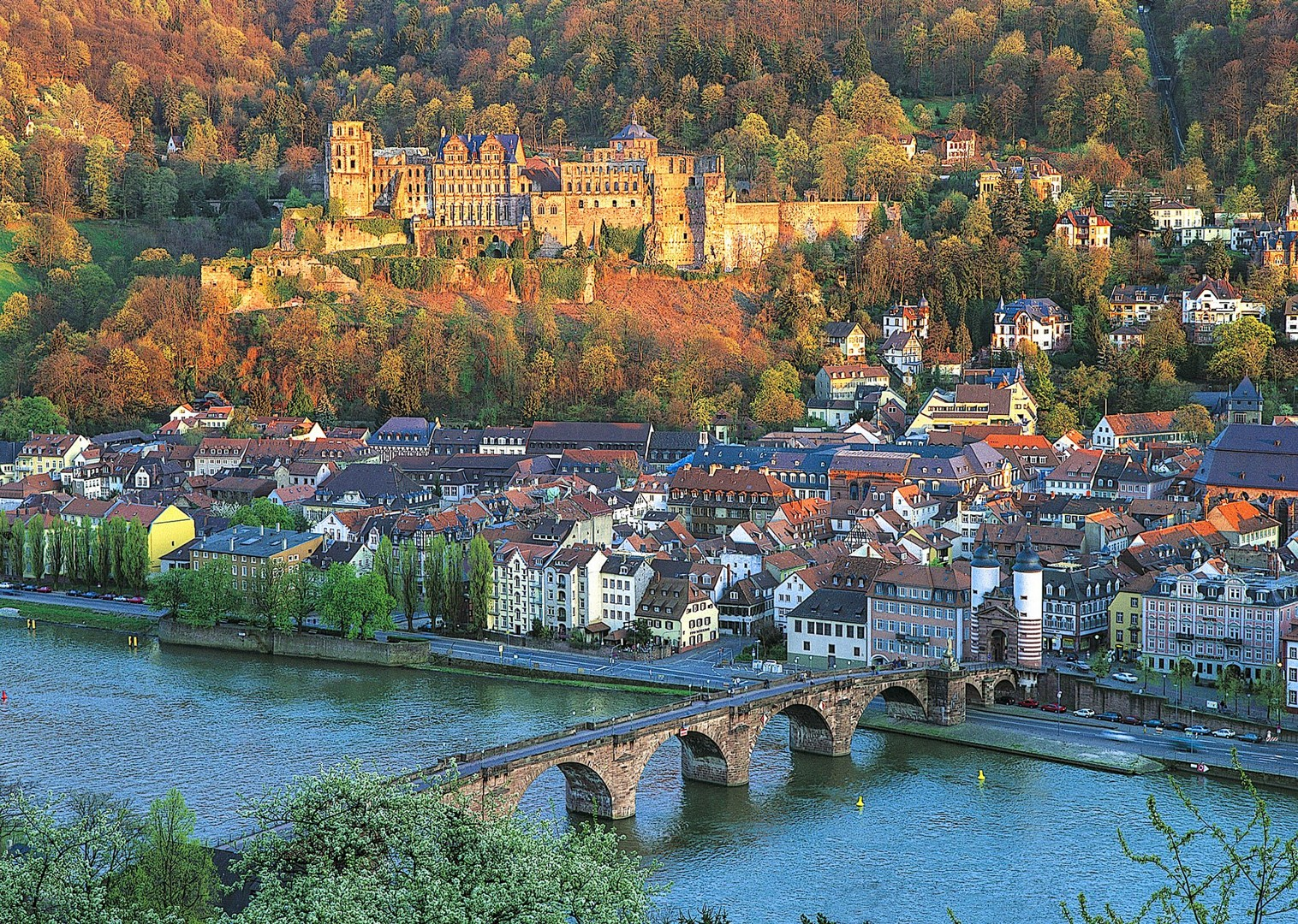 eb-rein-radweg-strassburg-mainz-heidelberg-16_28598121276_o-2-2.jpg - Germany and France - The Rhine Valley - Self-Guided Leisure Cycling Holiday - Leisure Cycling