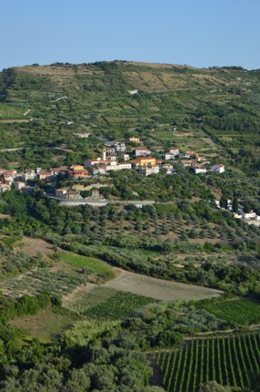 MALVASIA VINEYARDS AND MODOLO VILLAGE.JPG - Sardinia - Gentle Island Cycling - Guided Leisure Cycling Holiday - Leisure Cycling