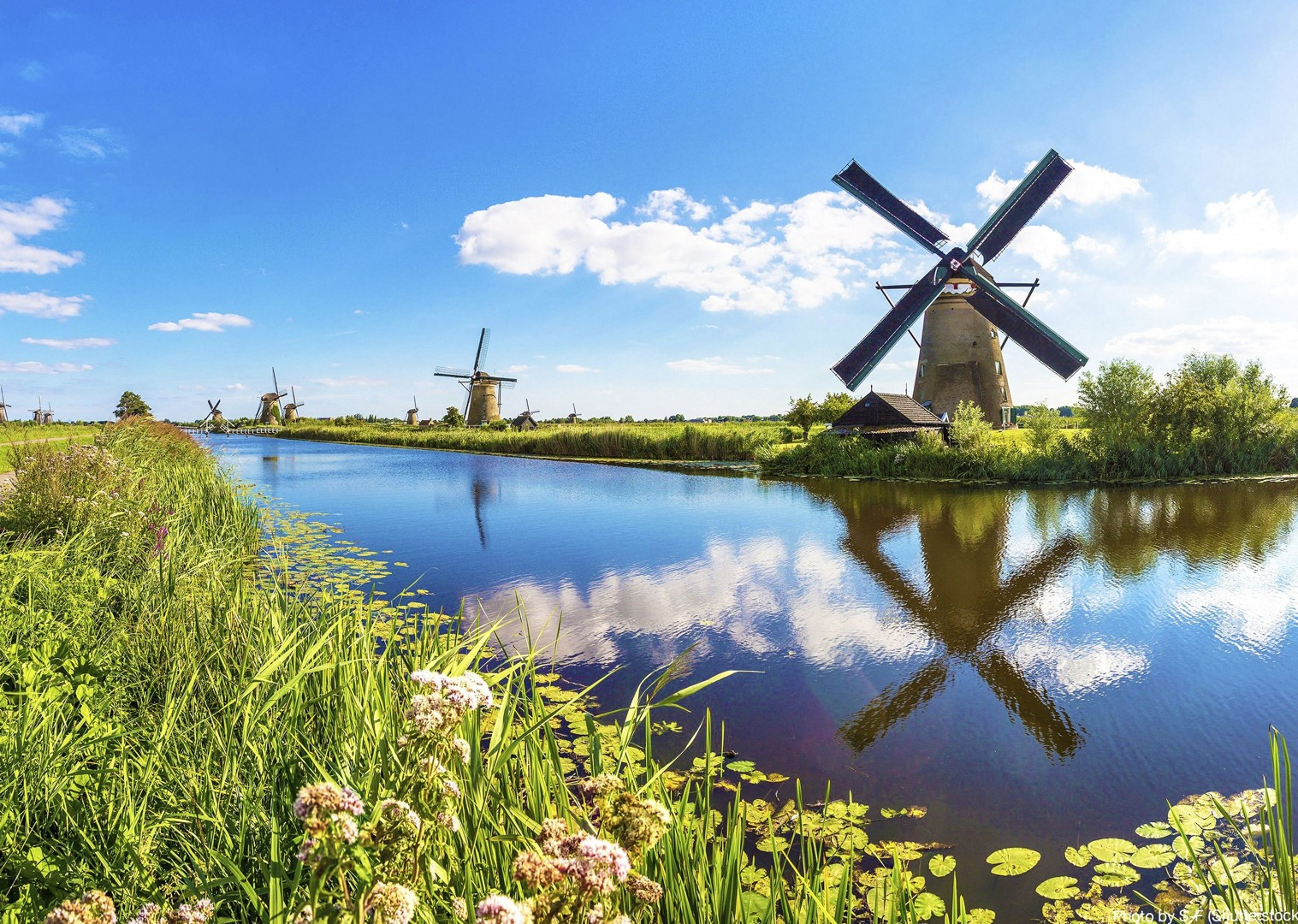 windmills-culture-holland-boat-tour-cycling-holiday-saddle-skedaddle.jpg - Holland and Belgium - Bruges to Amsterdam - Premium Bike and Barge Holiday - Leisure Cycling