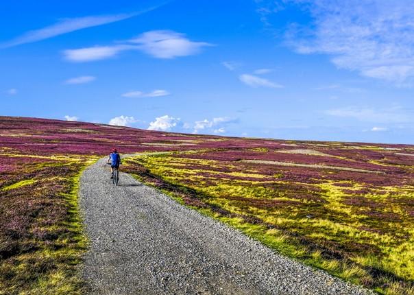 incredible-sights-uk-fields-cycling-holiday-fun.jpg