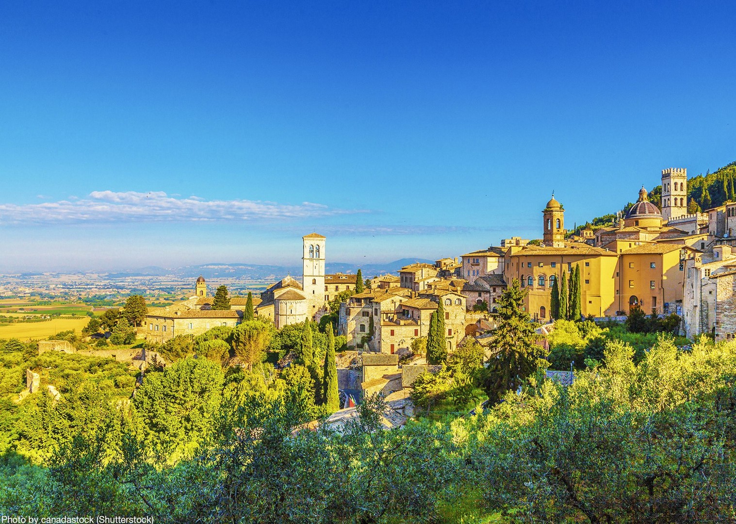 shutterstock By canadastock 367895231.jpg - Italy - Green Valley of Umbria - Self-Guided Leisure Cycling Holiday - Leisure Cycling