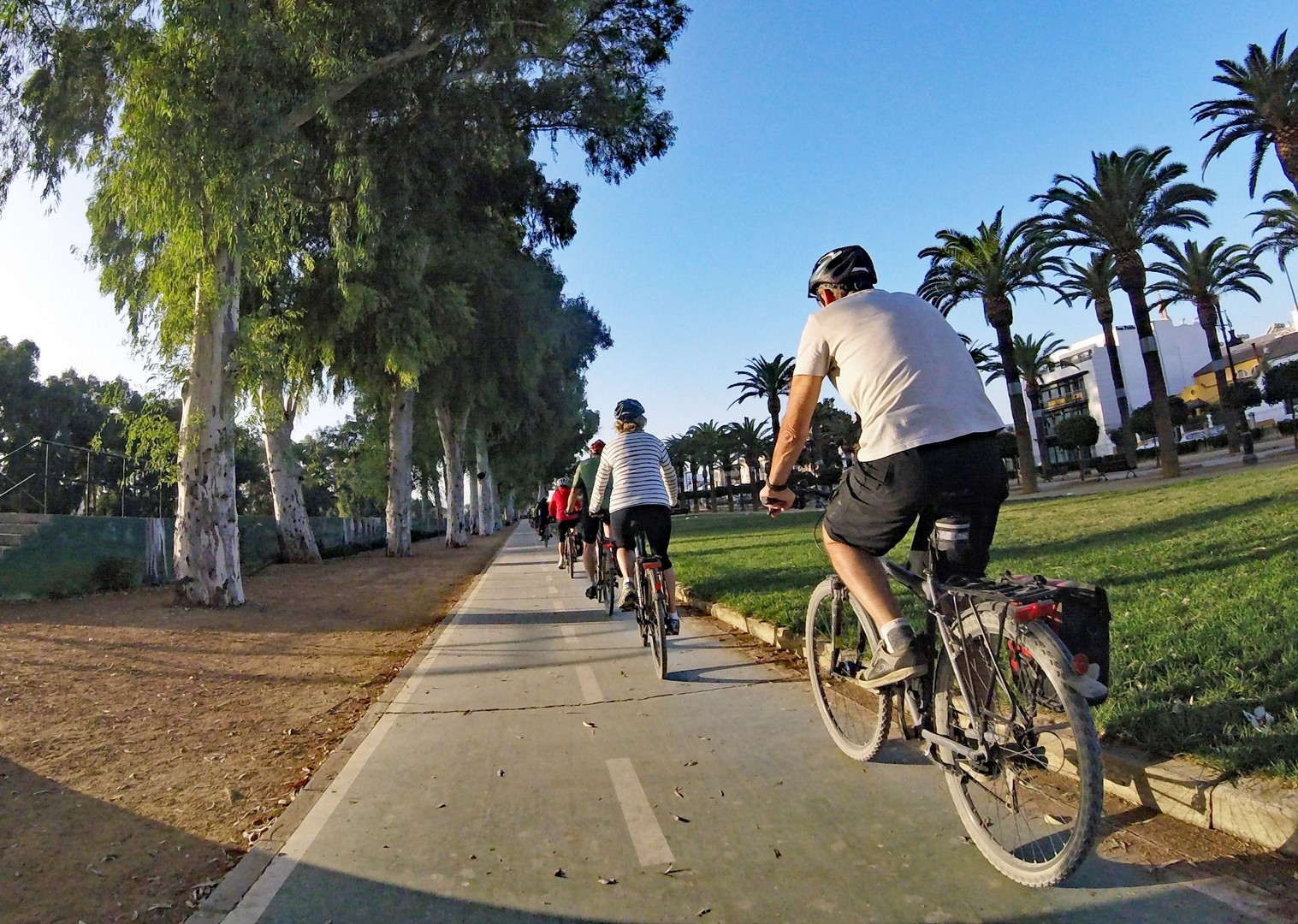 Riding out of Ecija2.jpg - Spain - Andalucia - White Villages to the Ocean - Leisure Cycling