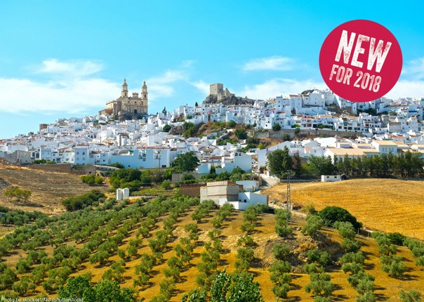 By stocker1970 shutterstock_681175240.jpg - NEW! Spain - Andalucia - White Villages to the Ocean - Leisure Cycling