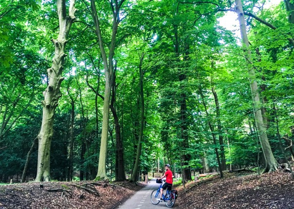 dutch-discoverer-holland-family-cycling-holiday-saddle-skedaddle-trip.jpg
