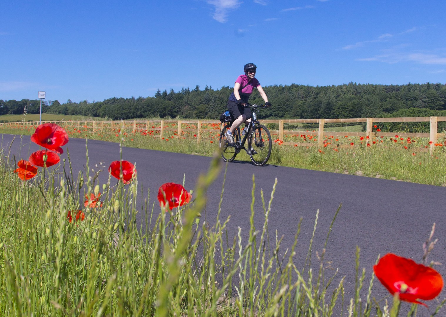 hadrians-explorer-self-guided-country-cycling.jpg - UK - Highlights of Hadrian's Cycleway - Self-Guided Family Cycling Holiday - Family Cycling