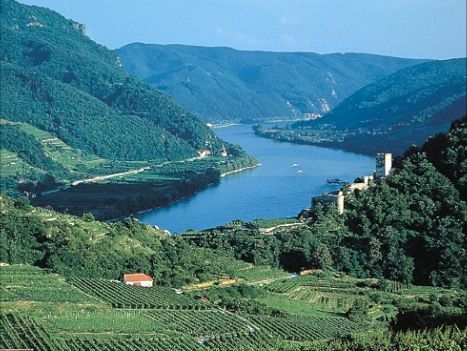 Austria - Blue Danube - Linz to Vienna - Self-Guided Family Cycling Holiday - Family Cycling