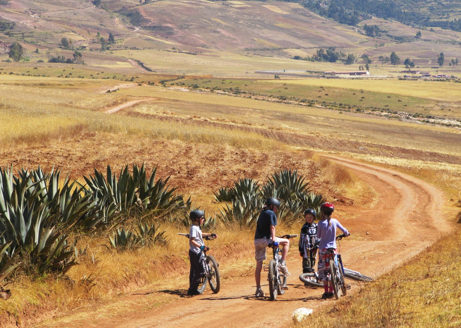 machu-picchu-peru-family-cycling-holiday-skedaddle.JPG - Peru - Andean Adventure - Guided Family Cycling Holiday - Family Cycling