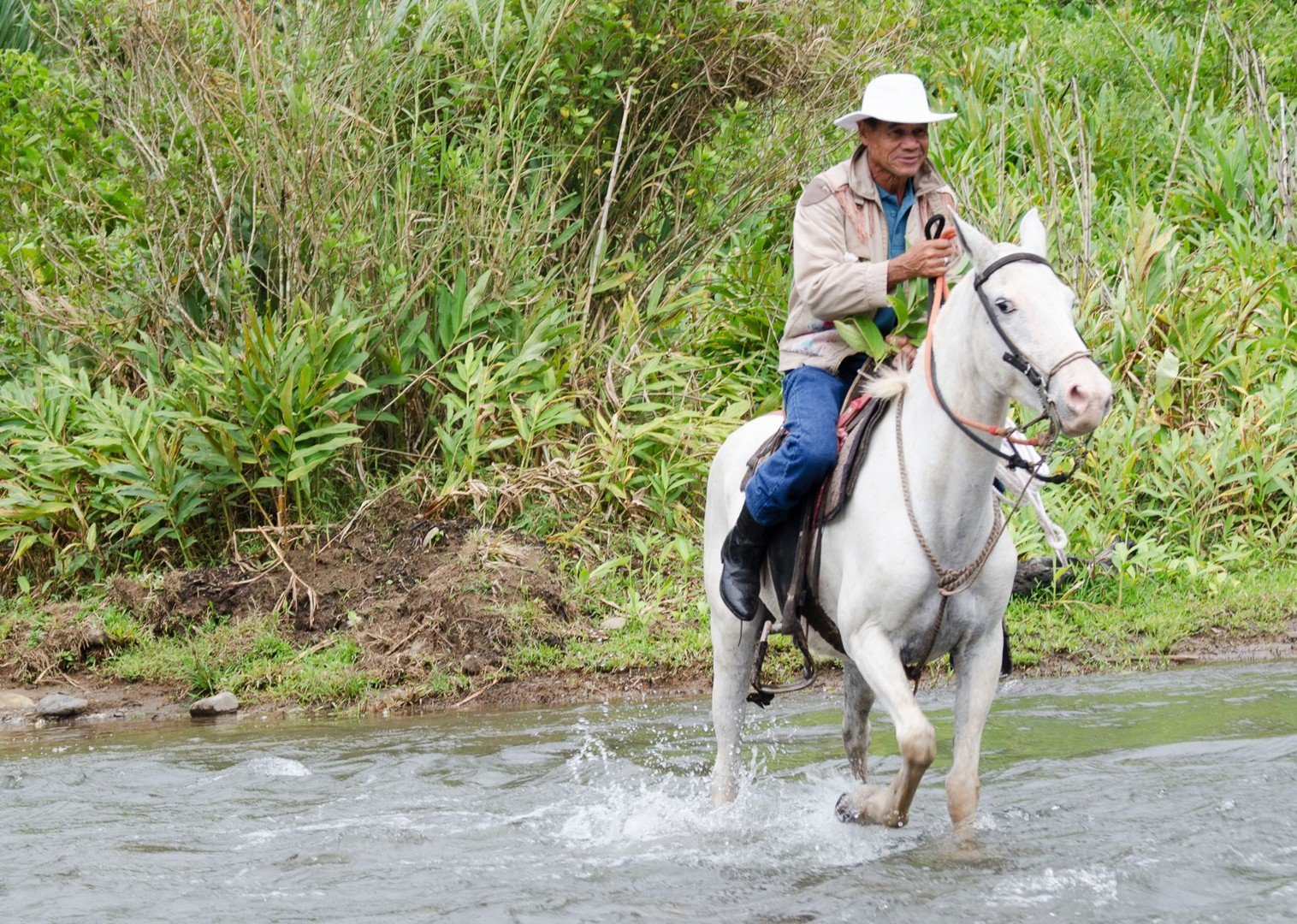 horse-riding-costa-rica-volcanoes-and-valleys.jpg - Costa Rica - Volcanoes and Valleys - Guided Family Cycling Holiday - Family Cycling
