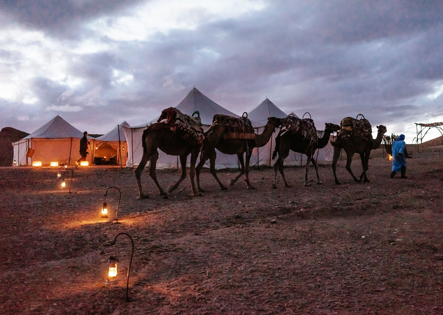 Family-Cycling-Holiday-Morocco-Desert-Mountains-Coast-Camels-ride-a-camel-desert - Morocco - Desert, Mountains and Coast - Family Cycling