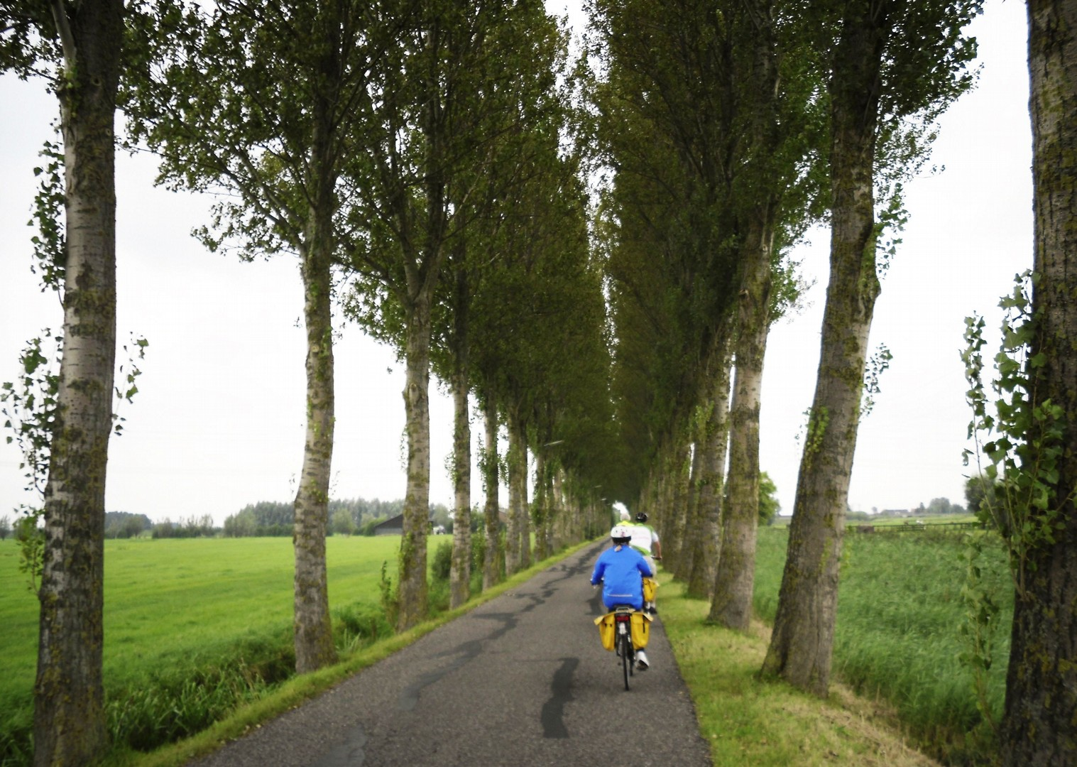 monnickendam-holland-windmills-and-golden-beaches-bike-and-barge-holiday.jpg - Holland - Windmills and Golden Beaches - Bike and Barge Holiday - Family Cycling