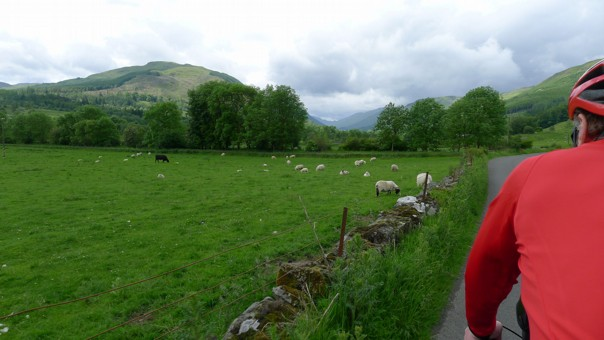 lochsandglens6.jpg - UK - Scotland - Lochs and Glens - Self-Guided Family Cycling Holiday - Family Cycling